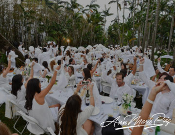 Ann Marie Puig participates as Table Leader at prestigious Le Diner en Blanc event